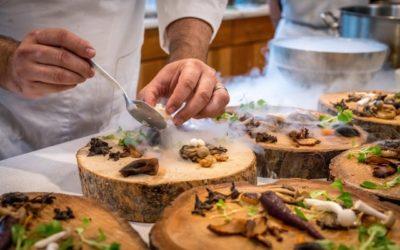 Website für Restaurants: Dieses Konzept sorgt für noch mehr Gäste
